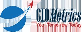 CIOMetrics LLC
